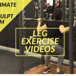LEG EXERCISE VIDEOS